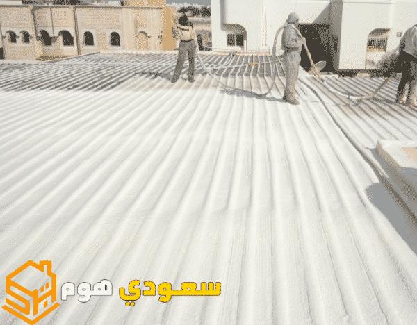 شركة عزل اسطح بحي النخيل